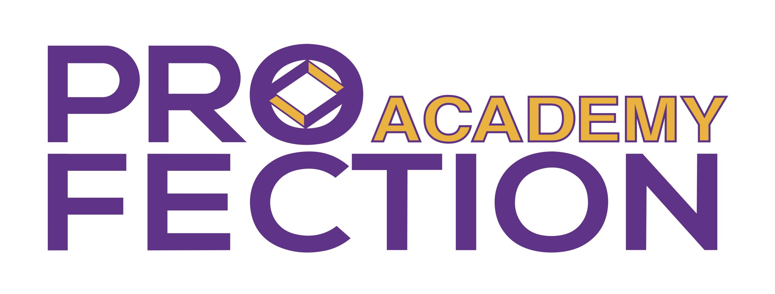 Pro-Fection Academy